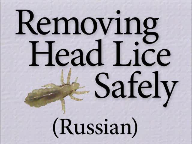 Removing Head Lice Safely (Russian)