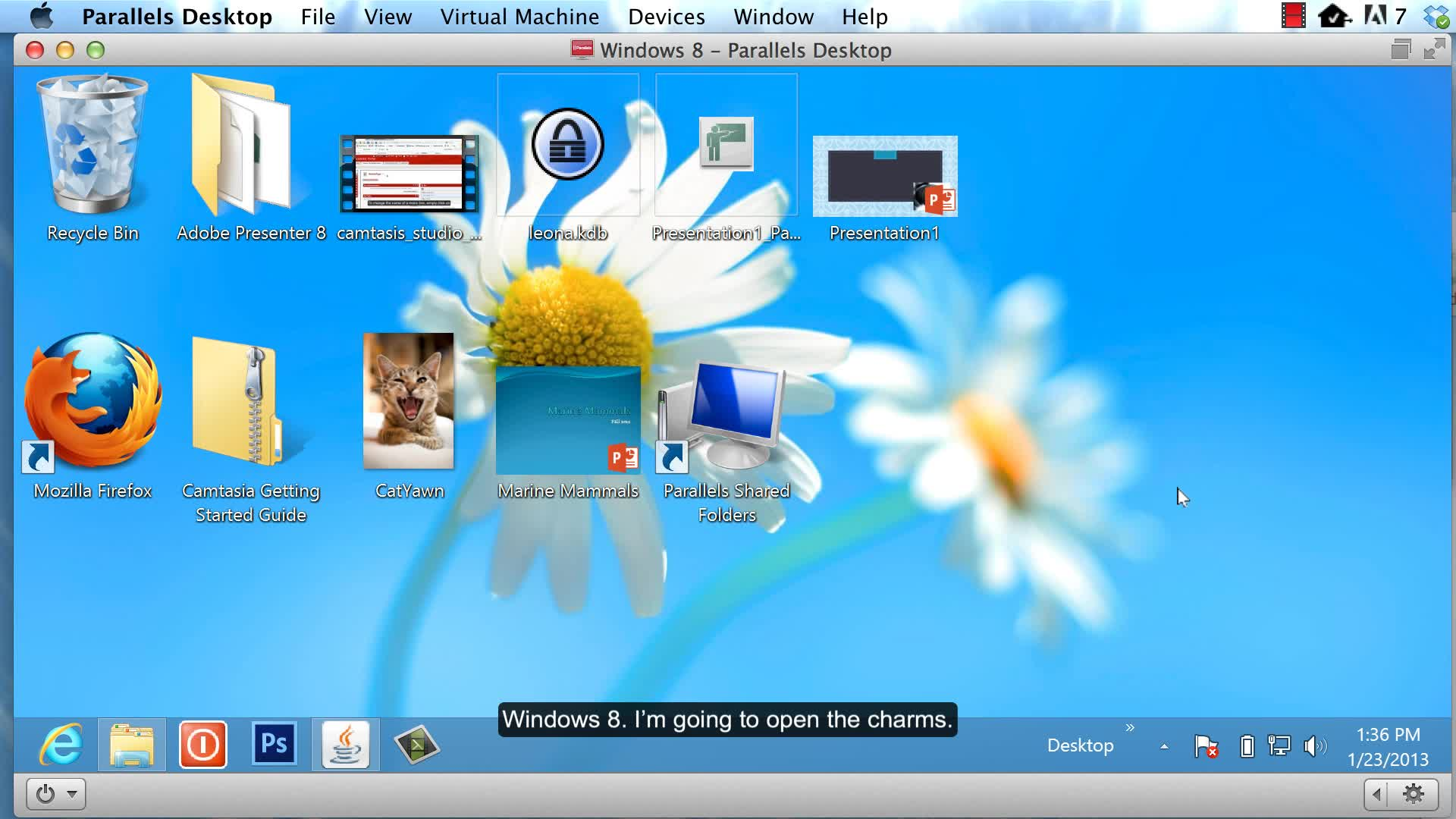 Turning off Java - Windows 8