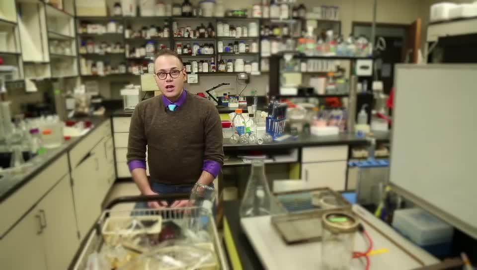 Brad Bartholomai, Microbiology Major