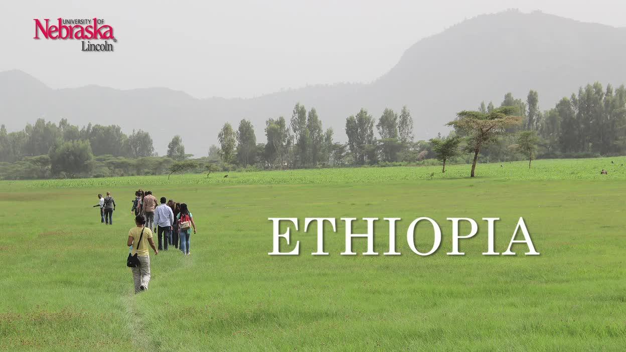 Ethiopia 2015 Interviews