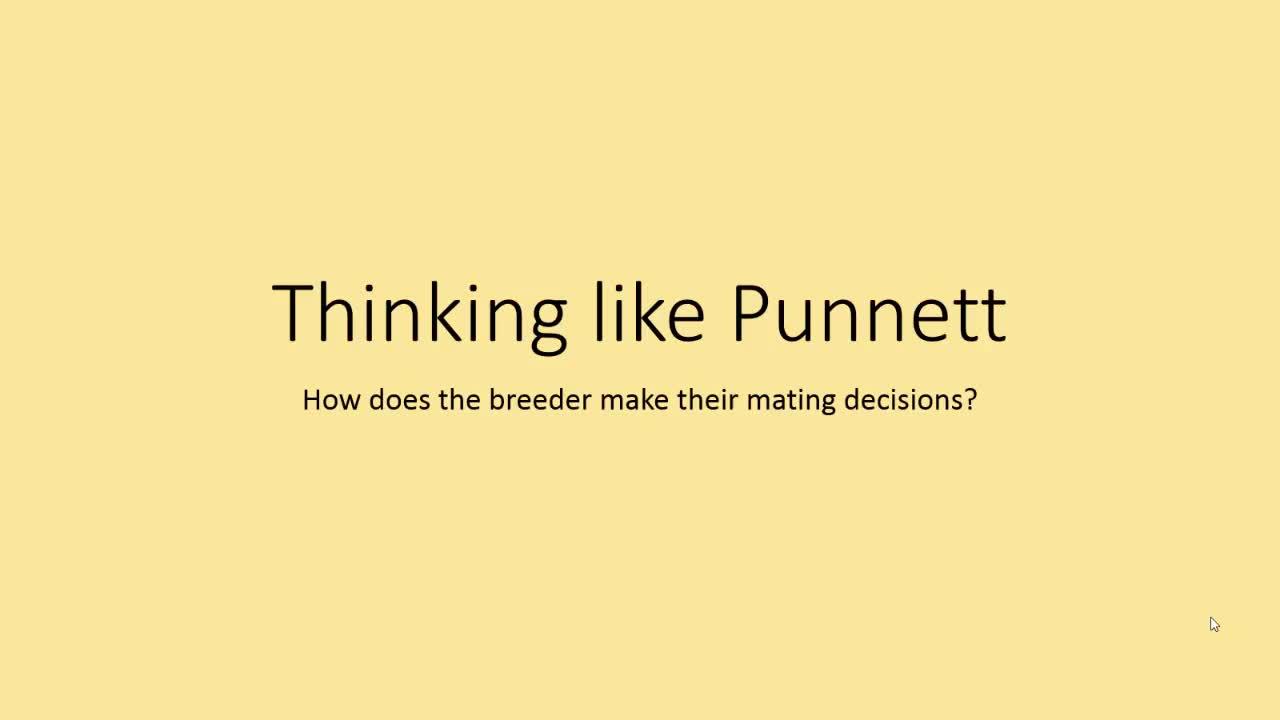 Thinking Like Punnett - Enviropig