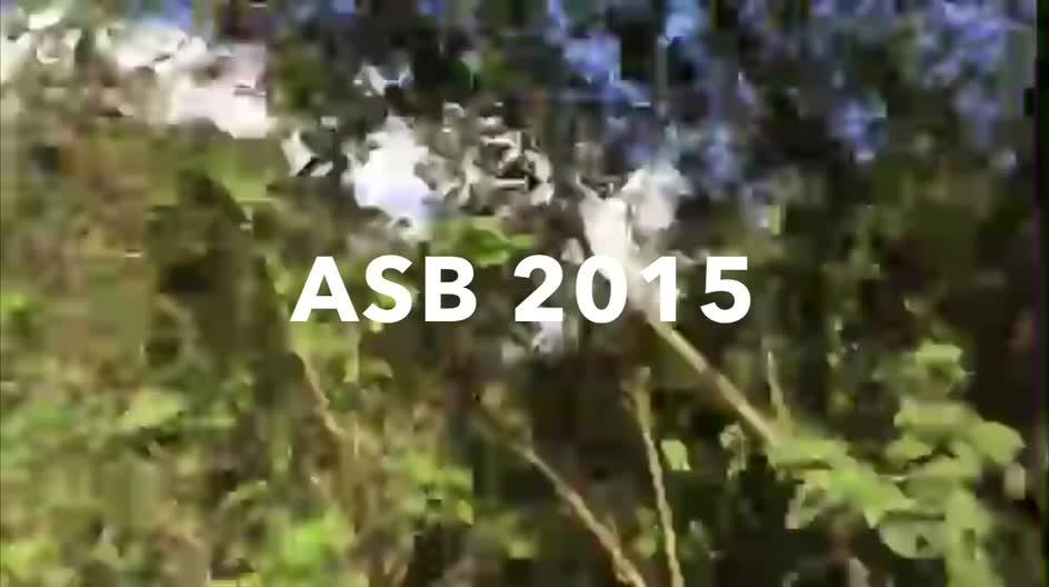 2015 ASB trip to Guatemala