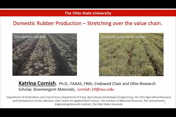 Domestic rubber production – Stretching over the value chain