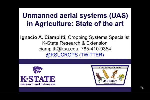 Unmanned aerial systems (UAS) in agriculture: State of the art