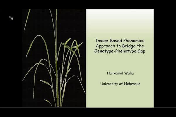 Image-based plant phenomics approach to bridge the genotype-phenotype gap
