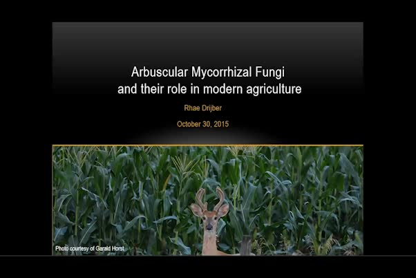 Arbuscular mycorrhizal fungi and their role in modern agriculture
