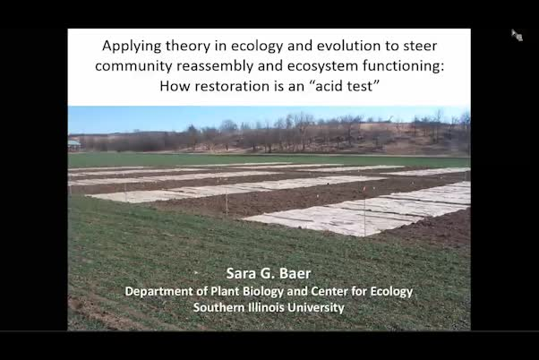 "Applying theory in ecology and evolution to steer community reassembly and ecosystem functioning—how grassland restoration is an ""acid test"""
