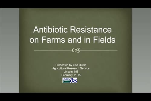 Antibiotic Resistance on Farms and in Fields