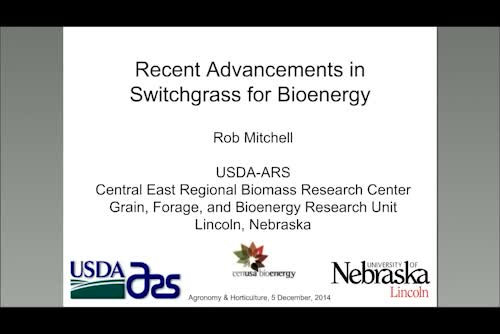Recent advancements in switchgrass for bioenergy