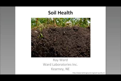 Haney and PLFA tests and soil health