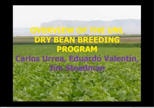 Overview of the UNL Dry Bean Breeding Program