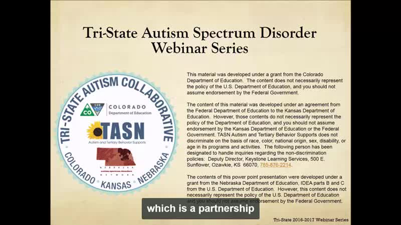 Transition Planning for Individuals with ASD: Part 3 of 4: The Central Importance of Sexual Education in ASD