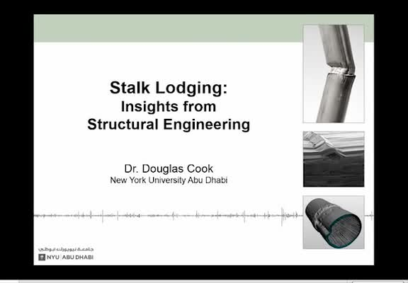 Stalk Lodging: Insights from Structural Engineering
