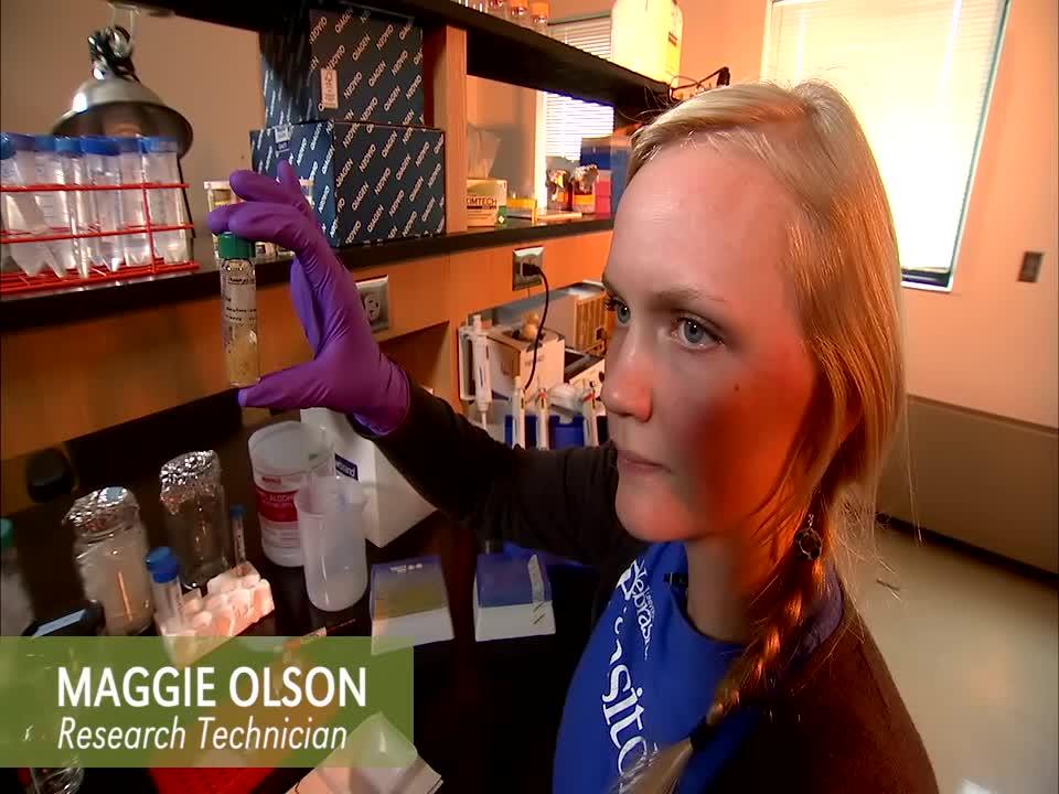 Guts & Glory: Maggie Olson