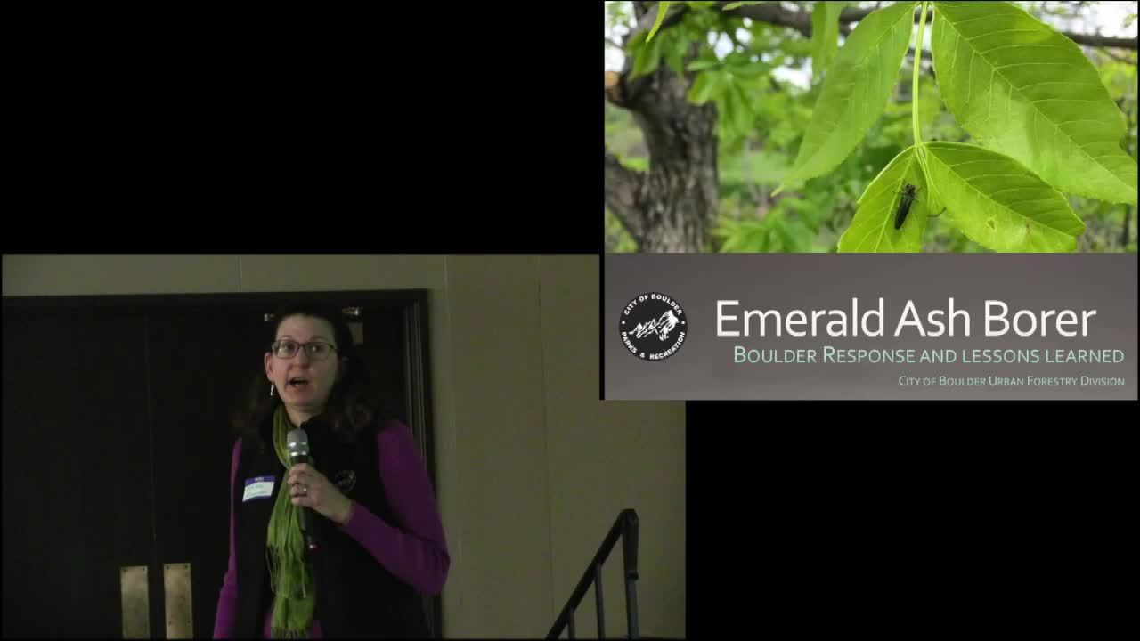Emerald Ash Borer Management in Boulder, CO: four years after the find