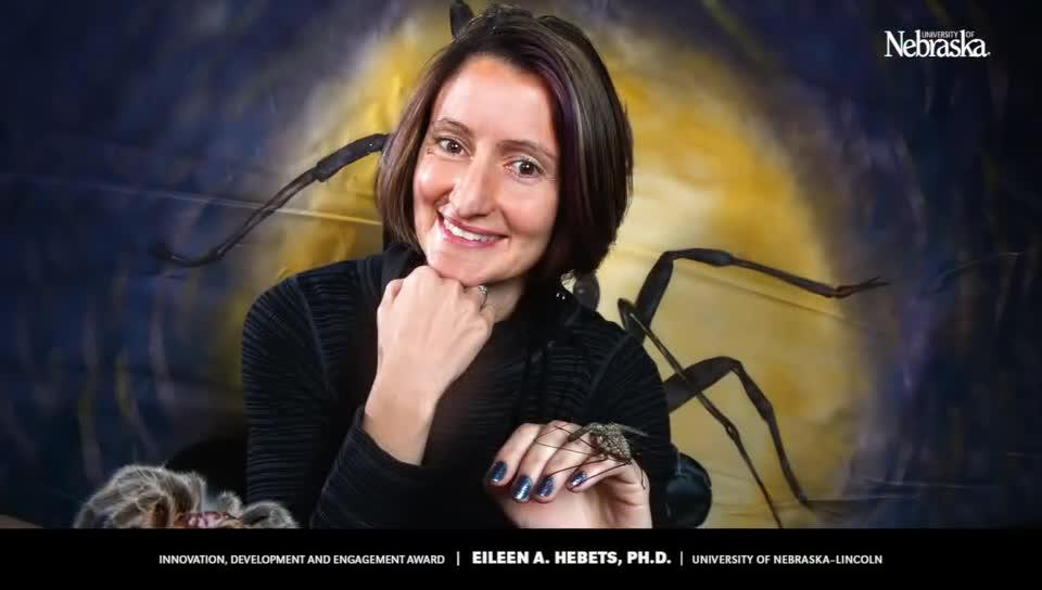 2017 IDEA: Eileen Hebets