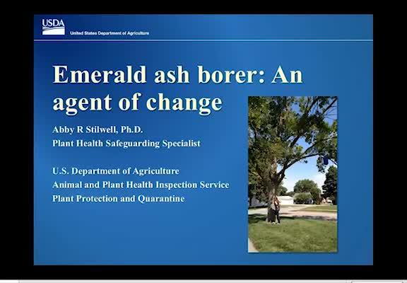Emerald ash borer: An agent of change