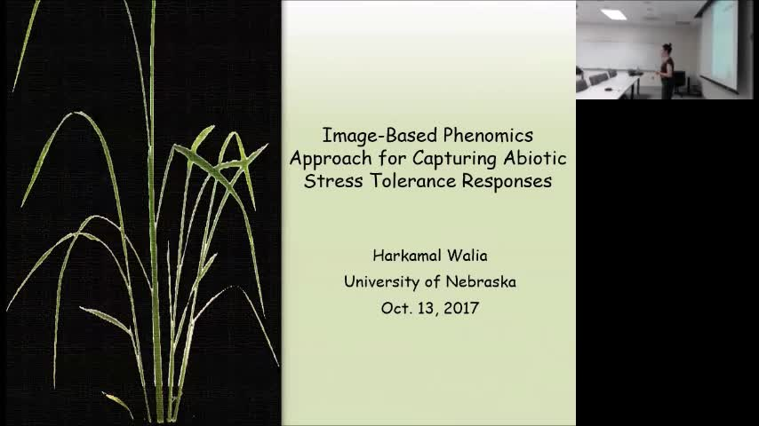 """Image-Based Phenomics Approach for Capturing Abiotic Stress Responses"""