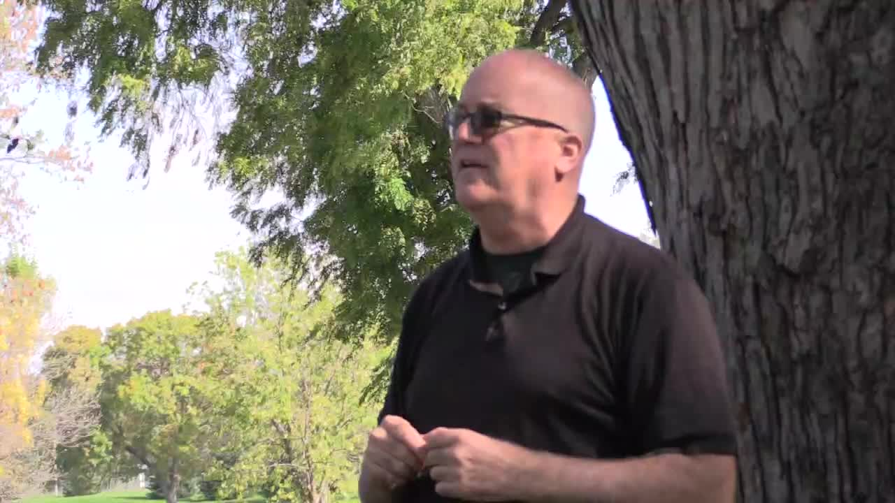 Tree Risk Assessments - Outdoor session (pt. 4)
