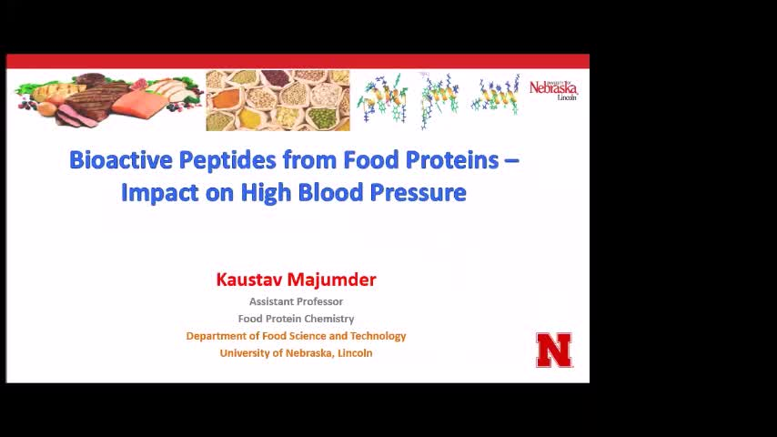 """Bioactive Peptides from Food Proteins-Impact on High Blood Pressure"""