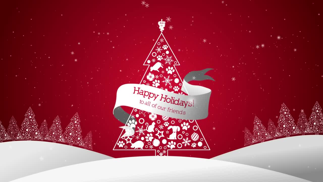 2017 Holiday Greetings from SVMBS