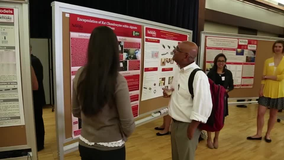 What is a Research Fair?