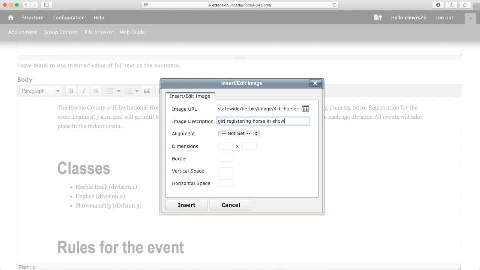 Add Alt Text in WYSIWYG Editor