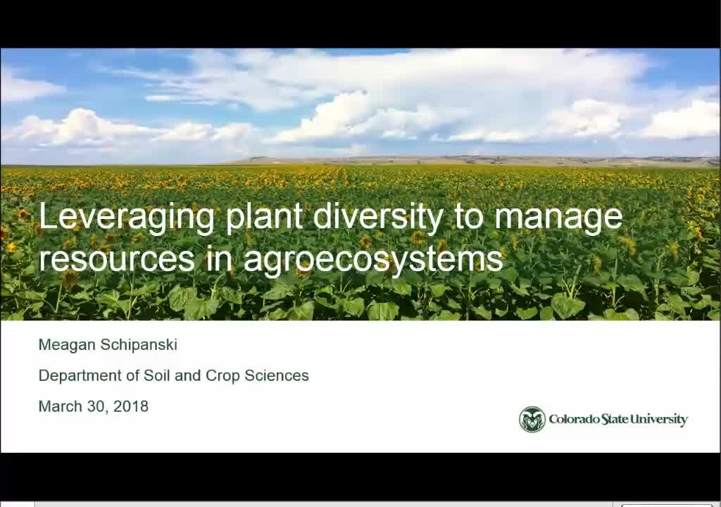 Leveraging plant diversity to manage soil water, carbon, and nitrogen in agricultural systems