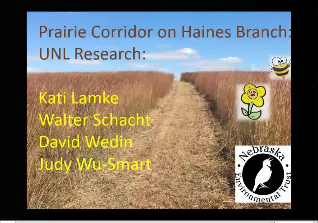 Conserving, managing and restoring grassland diversity in Lincoln's New Prairie Corridor on Haines Branch