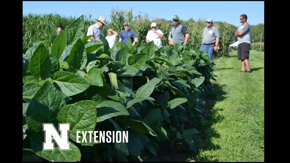 Nebraska Extension Crop Management Training - General Info