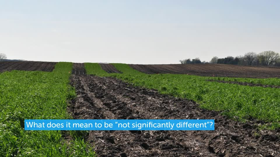 The Least Significant Difference in Ag Research