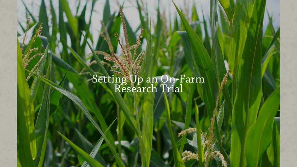 Setting Up an On-Farm Research Trial